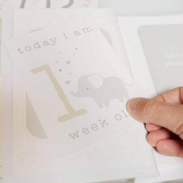 Set cadou cartonase si album foto Twinkle Twinkle Celebrations